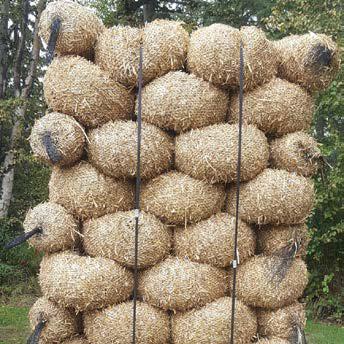 straw wattles square
