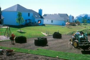 Turfgrass sod installation (15)